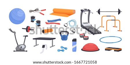 Set of colored various gym equipment vector graphic illustration. Collection of sport training apparatus, dumbbells, jump rope, aerobic ball, mat isolated on white background Royalty-Free Stock Photo #1667721058