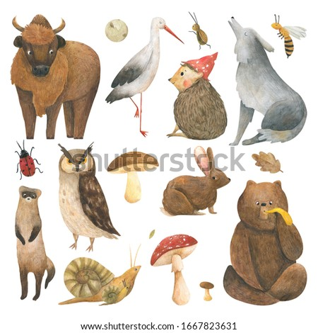 Watercolor set with forest animal:  bear, rabbit, snail, wolf, insect, bison, ferret, filin, hedgehog and stork. Illustrations for children