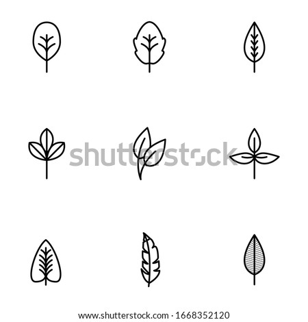 Set of line, outline leaves, leaf isolated on white background. Floral elements, botanical icons EPS Vector #1668352120