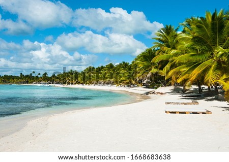 Beautiful view on the beach on Saona Island. White sand and palm trees and blue sea and chaise longue