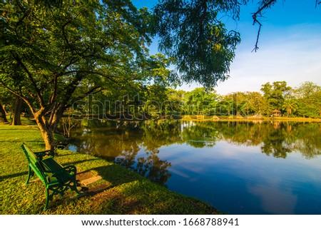 Park bench under tree in city public park sunset nature landscape #1668788941