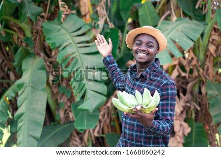 African farmer holding banana at organic farm #1668860242