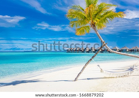 Tropical beach background as summer landscape with beach swing or hammock and white sand and calm sea for beach banner. Perfect beach scene vacation and summer holiday concept. Boost up color process  #1668879202