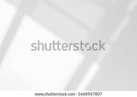 Abstract architecture shadow and lights in office room  on white wall  from window, dark shadows indoor in house  background, monochrome, black and white