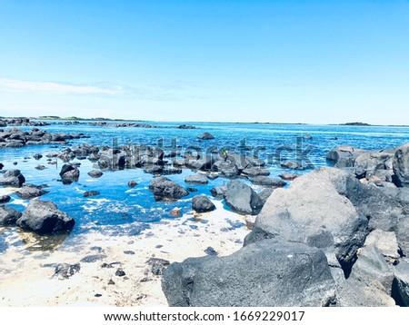 Beautiful beach scenery from Mauritius  #1669229017