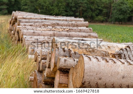 A pile of Wood on a field and Forest in Background