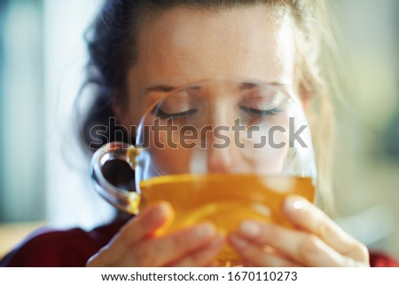 trendy 40 years old woman in black body lingerie and red bathrobe in the modern house in sunny day drinking cup of green tea. #1670110273