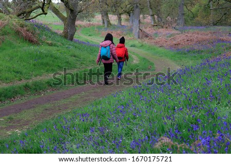 Happy children enjoying walking in bluebell wood. This photo was taken in early May at a bluebell wood in Scotland.  Bluebell blossoms last only for two-three weeks, between April and May. #1670175721