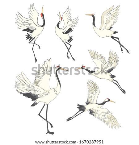 Crane bird set. illustration on white background Royalty-Free Stock Photo #1670287951