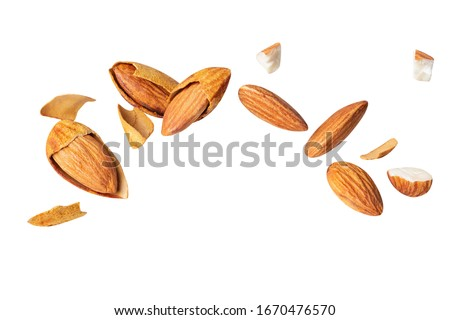 almond fly Crack blast  Closeup isolated on the white background Full depth of field.