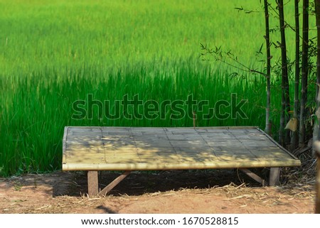 Bamboo litter beside the green rice fields. Ecotourism and Culture of Thailand, Laos, Southeast Asia #1670528815
