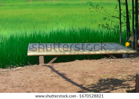 Bamboo litter beside the green rice fields. Ecotourism and Culture of Thailand, Laos, Southeast Asia #1670528821