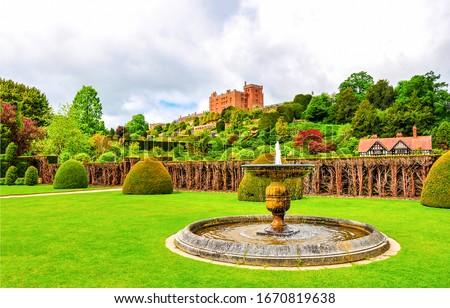 Fountain in park garden. Sumemr green park garden fountain. Fountain in garden #1670819638