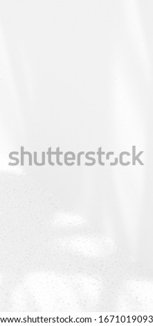 Abstract shadows background lights. Shadows wall  background nature texture. shadows light summer.  #1671019093
