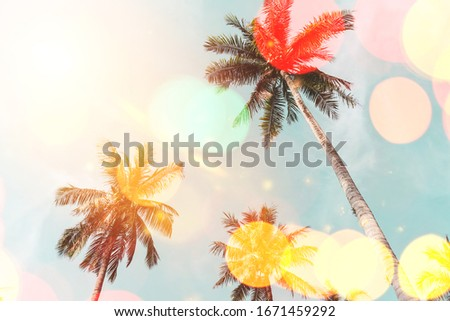 Tropical palm tree on blue sky with colorful bokeh light abstract background. Summer nature season and travel holiday concept. Vintage tone filter effect color style.