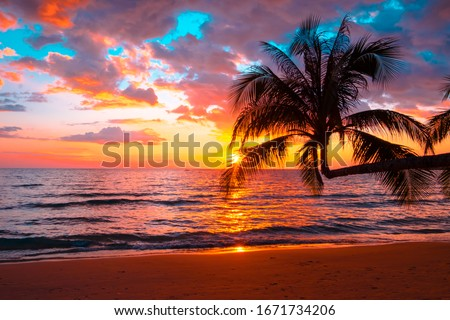 Silhouette of palm trees Beautiful sunset on the tropical sea beach background for travel in holiday relax time, Royalty-Free Stock Photo #1671734206