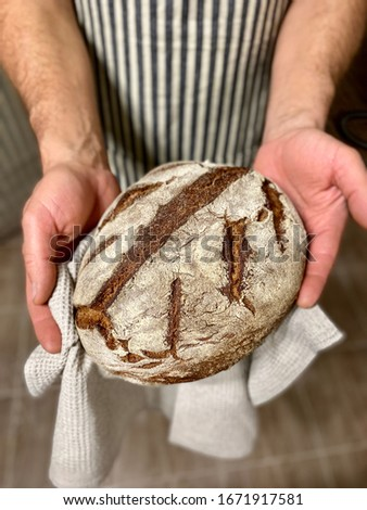 Freshly baked loaf of homemade rye bread in male hands. A male baker in a striped dark apron holds home-made rye bread in his hands. #1671917581