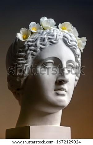 Gypsum statue of Venus head. Statue. Renaissance epoch. Gypsum copy of ancient statue Venus head isolated on black background. Plaster sculpture woman face. Venus of Milo. Ancient