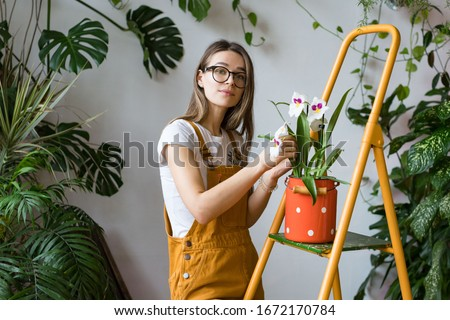 Young woman gardener in glasses wearing overalls, taking care for orchid in old red milk can standing on orange vintage ladder, looking at camera. Home gardening, love of houseplants, freelance.  #1672170784
