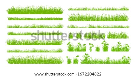 Set of Green Grass Isolated on White Background.