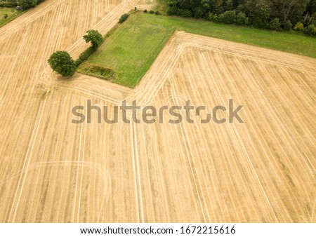 Agricultural cornfield from above shot by a drone on a bright sunny day in germany. Ariel view lines. #1672215616