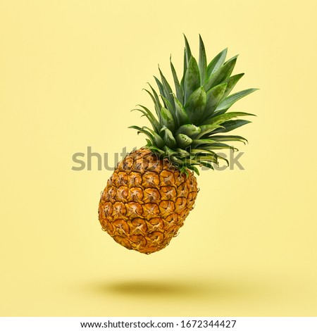 Flying in air pineapple tropical fruit on yellow. Minamal, Vitamin pineapple, vegan dieting food. Whole sweet fresh fruit. Levitation, falling fly pineapple creative concept Royalty-Free Stock Photo #1672344427