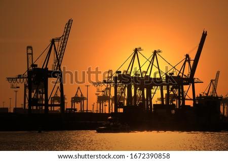 Gantry cranes, harbour cranes, container terminal, sunset, port, Hamburg, Germany Royalty-Free Stock Photo #1672390858