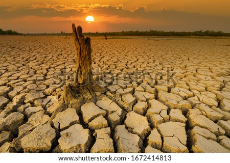 Arid clay soil sun desert global worming concept cracked scorched earth soil drought desert landscape dramatic sunset Royalty-Free Stock Photo #1672414813