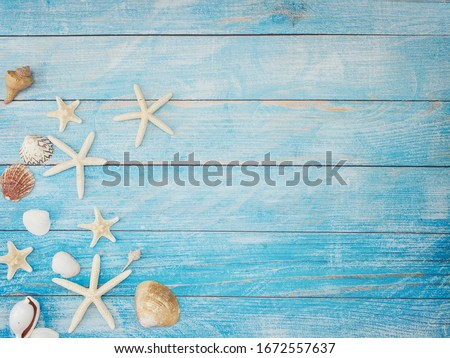 Summer beach background frame, seashells, starfish on light blue background. Top view, space for text. Royalty-Free Stock Photo #1672557637