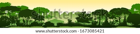Green landscape of rainforest, jungle thickets. Horizontal background. Scenery silhouette. Dense trees, lush spring, summer grass. Morning or afternoon. Foggy distance. Vector illustration. Royalty-Free Stock Photo #1673085421