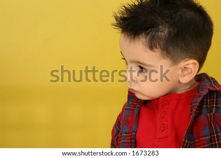 Three year old boy in flannel shirt on yellow background.  Headshot, profile. #1673283