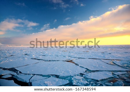 Global warming at the Arctic North Pole, Svalbard.  Royalty-Free Stock Photo #167348594