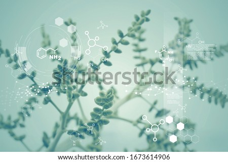Plants with biochemistry molecular structure, DNA, Science abstract, Medicine biology, Natural and science. #1673614906