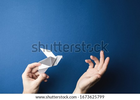 Origami pigeon in human hands on a blue isolated background. World Peace Day concept. Close up studio photo.
