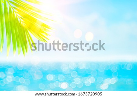 Blur beautiful nature green palm leaf on tropical beach with bokeh sun light wave abstract background. Copy space of summer vacation and business travel concept. Vintage tone filter effect color style #1673720905