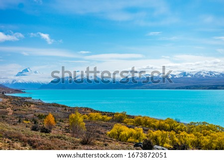 Beautiful view of bluish Pukaki lake with autumnal trees in the foreground and snowy Mount Cook in the background taken on a sunny day, New Zealand #1673872051