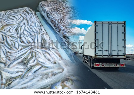 Transportation of frozen food. A refrigerator truck transports frozen seafood. Fish briquettes on the background of a truck. Logistics in the fishing industry. #1674143461