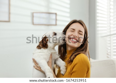 Young woman with her cute Jack Russell Terrier at home. Lovely pet #1674253951