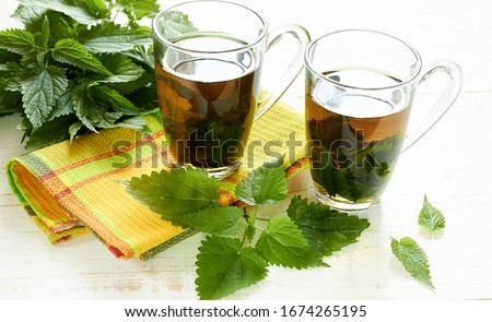 Nettle tea or decoction in glass cups and fresh urtica herb isolated on white wood, first spring vitamin green food and salad ingredient, closeup, copy empty space, healing herb concept #1674265195
