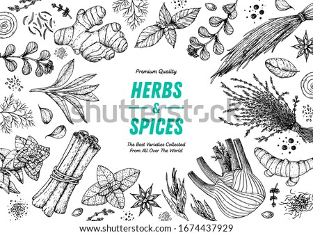 Herbs and spices hand drawn vector illustration. Aromatic plants. Hand drawn food sketch. Vintage illustration. Card design. Sketch style. Spice and herbs black and white design. #1674437929