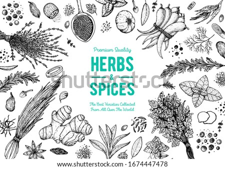 Herbs and spices hand drawn vector illustration. Aromatic plants. Hand drawn food sketch. Vintage illustration. Card design. Sketch style. Spice and herbs black and white design. #1674447478