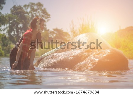Beautiful thai women wearing traditional thai clothes standing on an elephant in nature park thailand, woman concept #1674679684