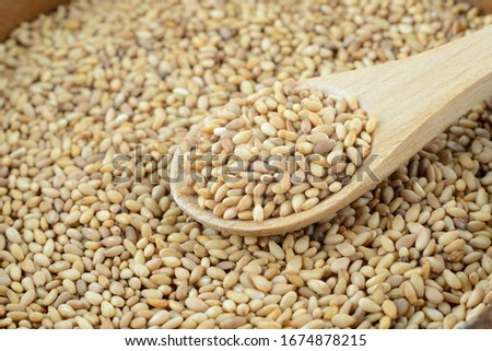 Japanese sesame and wooden spoon #1674878215