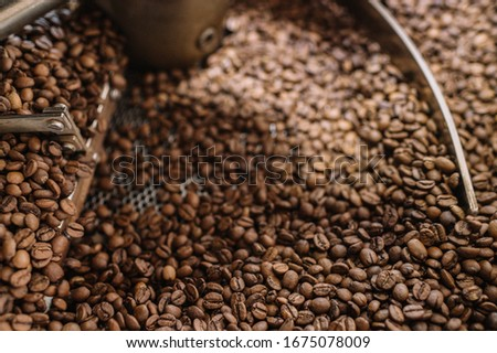 Freshly light roasted arabica coffee beans cooling in a roasters drum. Close up shot. #1675078009