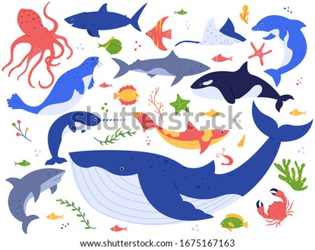 Ocean animals. Cute fish, orca, shark and blue whale, marine animals and sea creatures illustration  set. Seaweed, algae, starfish and water plants isolated on white background