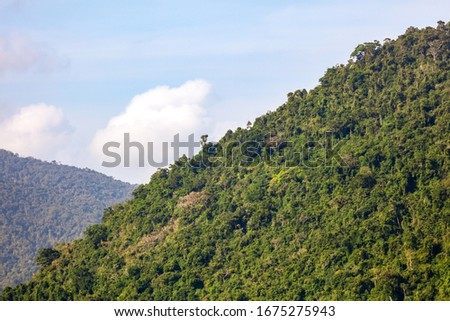 Mountains in the jungle on the island. Nature in the tropics. #1675275943
