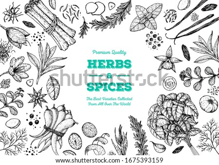 Herbs and spices hand drawn vector illustration. Aromatic plants. Hand drawn food sketch. Vintage illustration. Card design. Sketch style. Spice and herbs black and white design. #1675393159