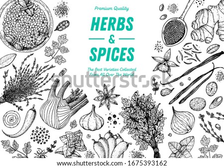 Herbs and spices hand drawn vector illustration. Aromatic plants. Hand drawn food sketch. Vintage illustration. Card design. Sketch style. Spice and herbs black and white design. #1675393162