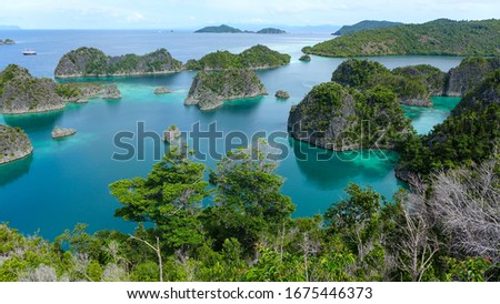 An aerial shot of islands covered in plants and green in West Papua, Indonesia #1675446373
