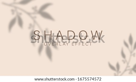 Shadow overlay effect. Transparent soft light and shadows from branches, plant, foliage and leaves. Mockup of transparent leaf shadow overlay effect and natural lightning. Vector mock up gradient mesh #1675574572